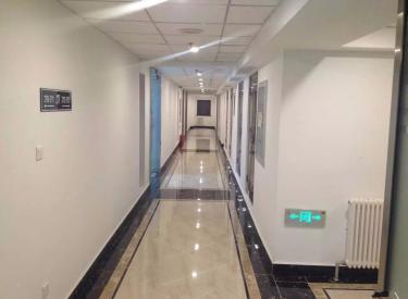 (出租)市府广场 天玺国际公寓 精装写字间