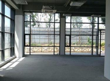 (出售)浑南大学科技城 自贸区内400平独栋写字楼