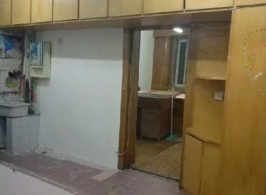 桃园小区 1室 1厅 1卫 37.6㎡