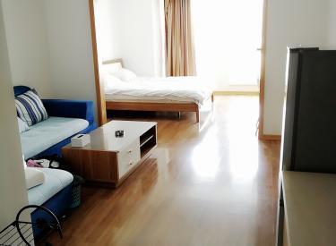 金地琥珀天地公寓 54平 一室精装修 拎包住 可押一付一