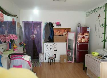 东亚国际城 1室 1厅 1卫 精装修 小户型63㎡
