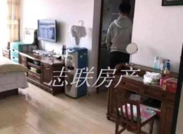 新湖明珠城 1室 1厅 1卫 46㎡ 半年付