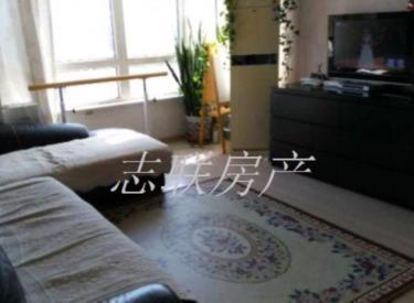 兴华街 新湖中国印象 全明户型 2室 2厅 1卫 100㎡