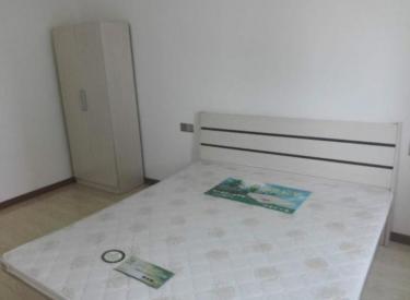 香堤南苑精装两室,家电全屋内干净,近地铁近财富近工大