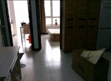 丽湾国际 1室1厅1卫    52.00㎡