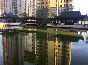 急售 地铁二号线 三盛颐景蓝湾 3室经典户型 园区有大水系