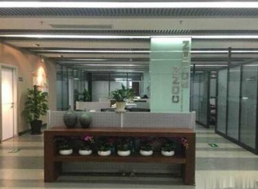 (出租)沈河区青年大街华新国际520平米精装修家具齐全