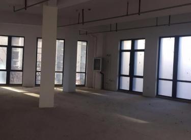 (出租)浑南中路金地左岸商业街商铺220平米