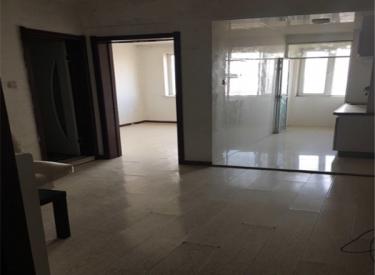 新汉城 1室1厅1卫    46.24㎡