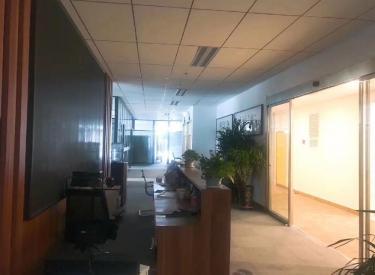 (出租) 沈河区 新地中心1#楼 560㎡
