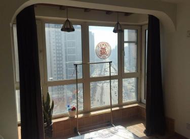 新湖明珠城 1室1厅1卫    47.00㎡