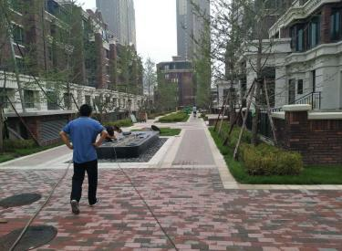 奥体板块  现房 地铁9号线 万锦香樟树