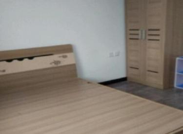明城新北市 品牌家电家具 周边配套齐全 精装两室 实景拍摄