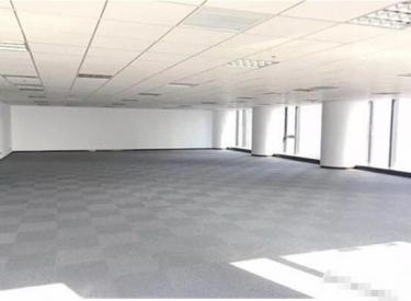(出租)青年大街 茂业中心 开发商直租 350平 精装修