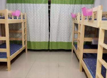 摩根凯利  2室 1厅 1卫 床位