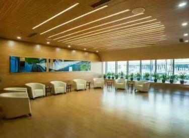 (出售)  沈阳国际软件园 200㎡五星级办公园区