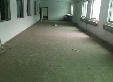 (出租) 浑南区 二十一世纪广场 厂房 库房 办公楼交通便利
