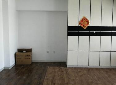 南市地铁旁-商住两用电梯房-包物业采暖-格林SOHO一室一厅