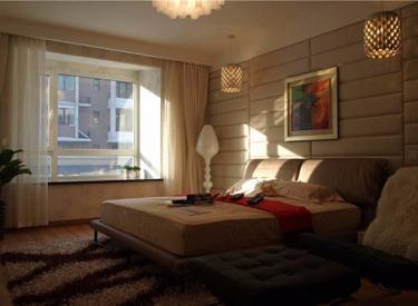 南京南街自贸区内长堤湾标准两室