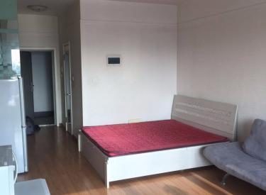 锦联左岸 1室1厅1卫    47.00㎡