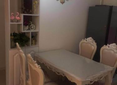 浑南第九小学旁中海康城两室87平送家电家具