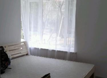 碧桂园星荟 3室2厅1卫    95.00㎡