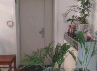 亚都名苑一期 3室2厅1卫    113.00㎡