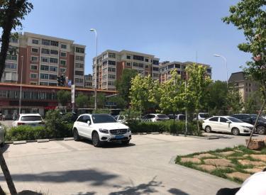 (出售) 沈河区房地产大厦附近911平纯一层门市55米宽门脸