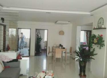 紧邻云峰街地铁口旁 鑫丰国际 小高层 简单装修 南北三室