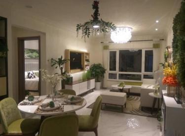 碧桂园太陽城88平 两室两厅 南北通透河景房地铁口性价比高