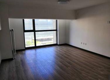 (出售)  佳华国际大厦 53㎡ 商住公寓