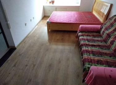丁香湖精装修一室小户型 拎包即住 随时看房 万科中铁丁香水岸