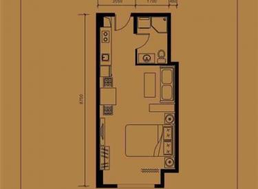 万隆国际商业广场 1室1厅1卫49.41㎡