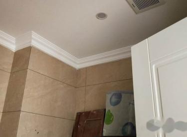 精装修 大面积 低价格 出租 新房