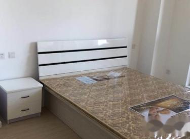 奥园国际 精装1室 全新 家电家具齐全 包取暖物业 1300月