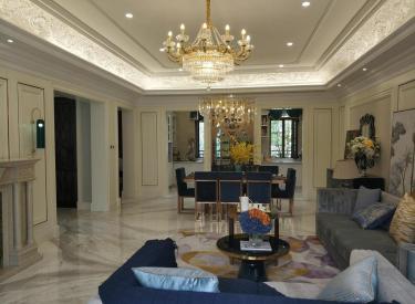 浑南白塔 隆河谷法式别墅 大面宽高举架 全新代别墅