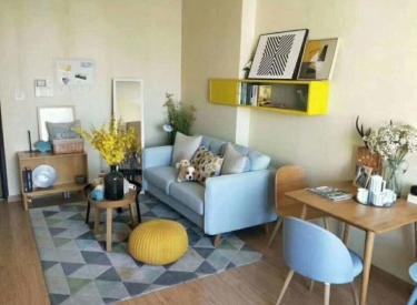 香槟国际不限购 市实验可落户 现房 设计空间大 随时看房