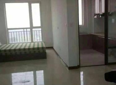 碧桂园一室一厅,南向,拎包入住