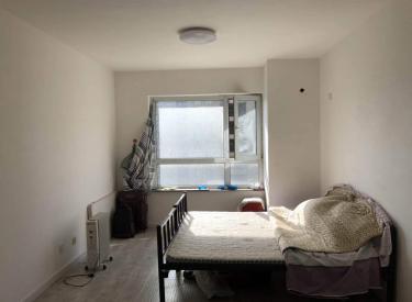 浑南 市府 泰莱枫尚 南向一室50平精装修38万 不挡光