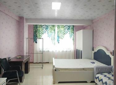 铁西区 北二路 精装修一室 维多利亚 低于市场价 直接就租