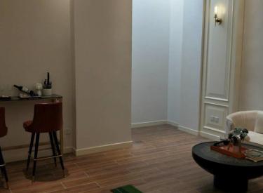 新市府 府城名著 联排别墅 赠花园地下室 临地铁 看房方便