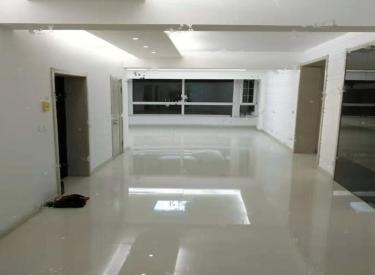 整租    八王寺商圈 新装修三室 屋内干净整洁 沈阳大学旁