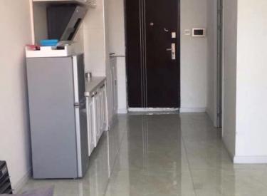 浑南营盘街地铁口 沿海国际中心 2室 家电家具全 包采暖物业