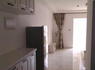 名流印象 1室 1厅 公寓出租 全新装修 交通便利