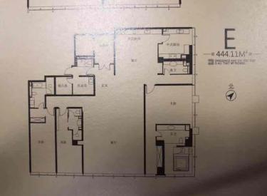 七星公馆、超低价位8室4厅2卫444㎡