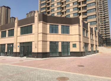 (出售)沈北新区距离蒲河路地铁口直线50米 紧邻盛京医院成熟配套
