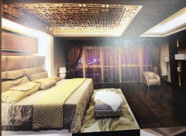 奥体豪华装修公寓上层人士的家4室 3厅 5卫 542㎡