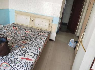 中央大学城小户型一室,中等装修看房方便