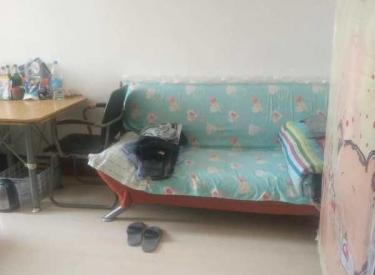 金丰社区 1室1厅1卫 37㎡