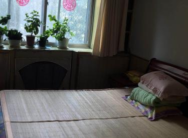 西舍宅 2室1厅1卫 54㎡